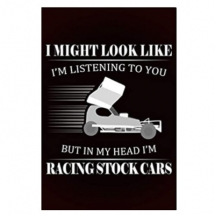 In my head I'm racing Stock Cars